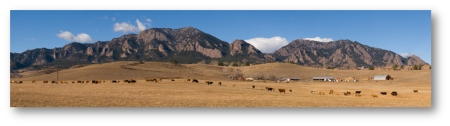 south-boulder-cow-vista-10x2shadowed