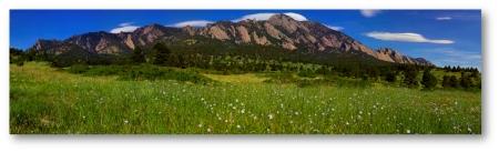 South Mesa Flaxen Vista