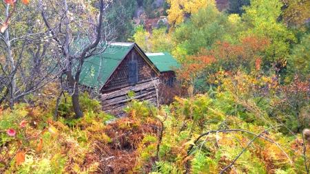 McGillvray Cabin