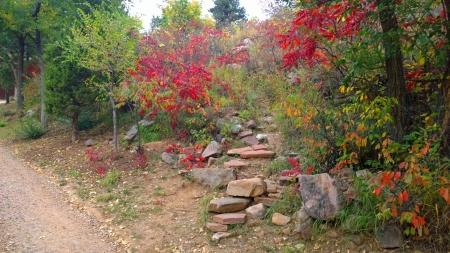 Lower Shadow Canyon Trailhead